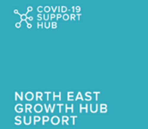 Zoom Group: Navigating Support from Government and North East Growth Hub