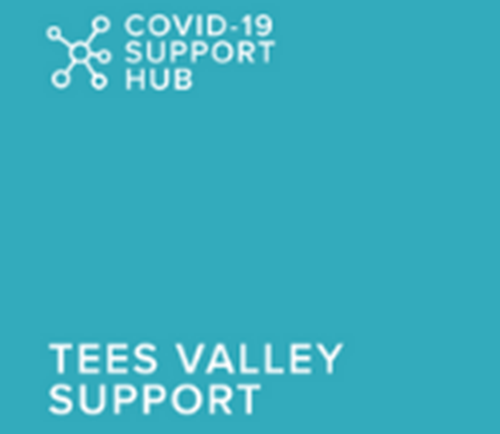 Zoom Group: Tees Valley Support